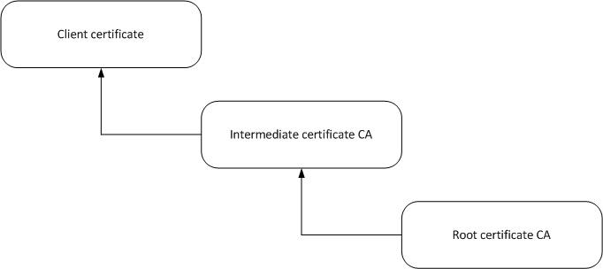 ssl-intermediate-info