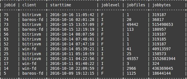 backup-via-open-source-bareos-6
